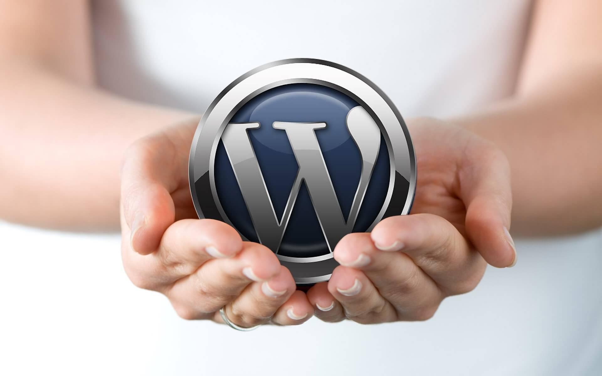 Das CMS WordPress
